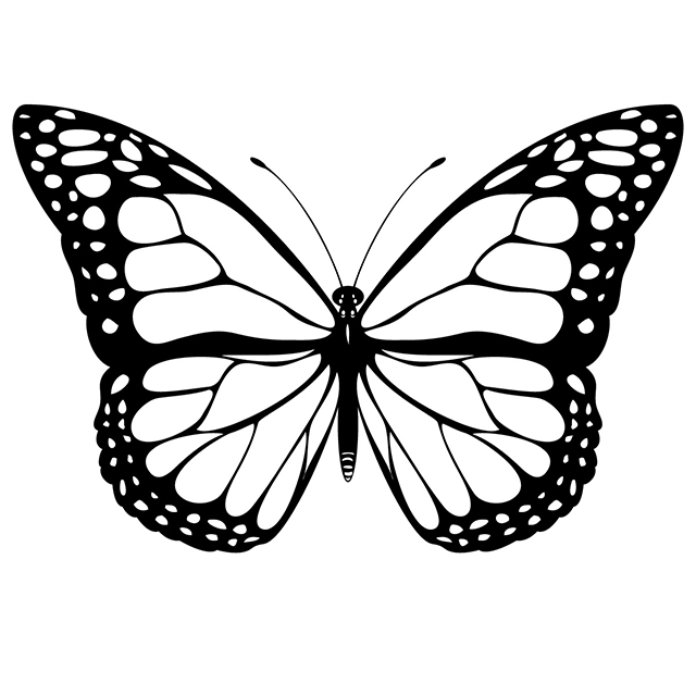 monarch-butterfly-640px.png